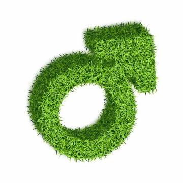 绿色青草纹理的立体男性性别标志符号png图片免抠矢量素材