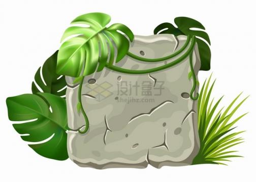 灰色的石板和热带雨林藤蔓png图片素材