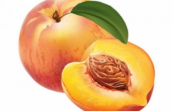切开的水蜜桃美味水果横切面png图片免抠矢量素材