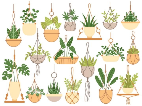 各种扁平化风格吊兰花卉绿植图片免抠矢量图
