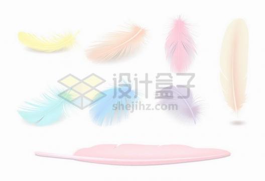 各种写真的黄色粉色蓝色羽毛png图片免抠矢量素材