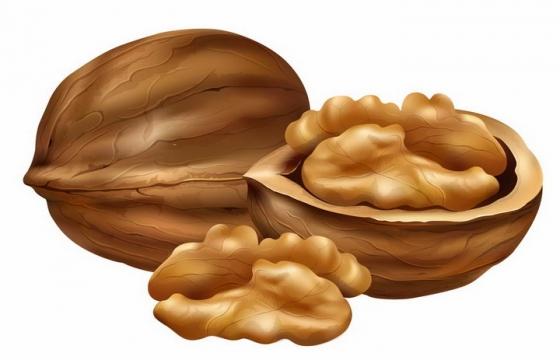 剥开的核桃美味坚果干果横切面png图片免抠矢量素材