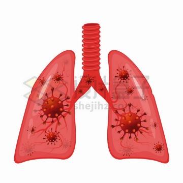红色新型冠状病毒肺炎感染的肺部人体器官组织png图片免抠矢量素材