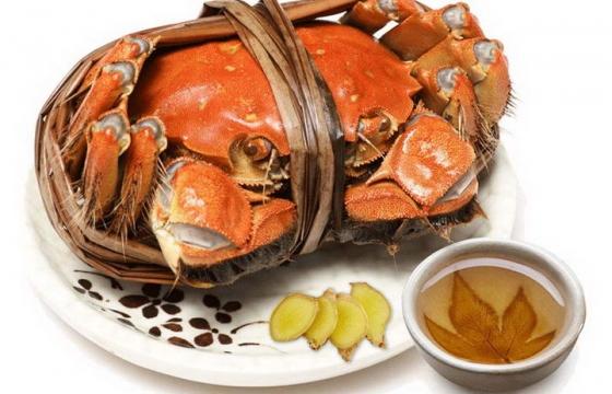被绑着的一只好看好吃的清蒸大闸蟹河鲜美食图片免抠素材