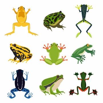 9种青蛙毒箭蛙等野生动物两栖动物png图片免抠矢量素材