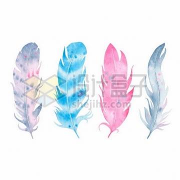 4个彩色羽毛鸟毛水彩画png图片素材