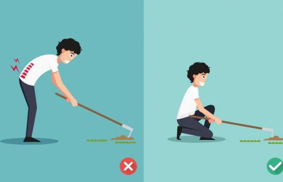 除草下蹲弯腰的正确和错误姿势图片免抠素材