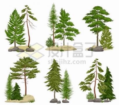 6款松树大树树林png图片免抠矢量素材