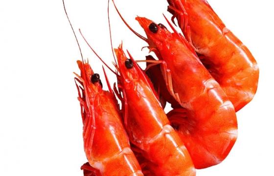 四只煮熟的河虾美味河鲜美食图片免抠素材
