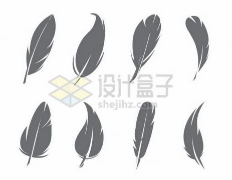 8款深灰色的羽毛图案png图片素材