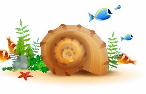 水族箱鱼缸海底中的贝壳海星海草鱼类png图片免抠矢量素材