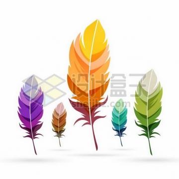 5款彩色鸟类羽毛扁平插画png图片素材