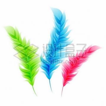 绿色蓝色红色鸟类羽毛扁平插画png图片素材