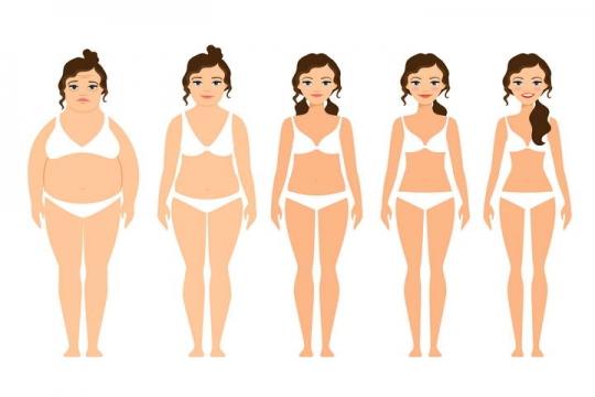 卡通风格从肥胖到苗条减肥人群示意图免扣图片素材