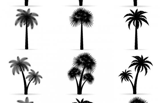 18款不同风格的热带树木椰子树剪影免抠矢量图片素材