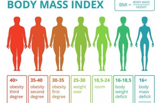 扁平化风格减肥身体质量指数BMI对照表示意图免扣图片素材