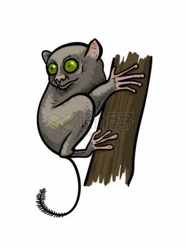 手绘风格抱着树干的眼镜猴野生动物png图片免抠矢量素材