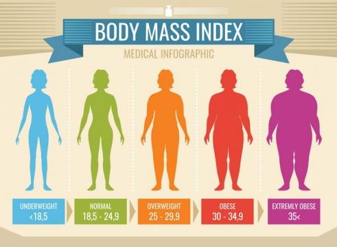 彩色减肥身体质量指数BMI对照表示意图免扣图片素材