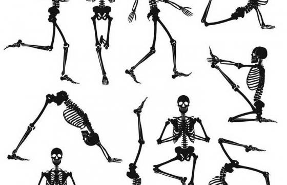10款正在做运动瑜伽的人体骨骼结构解剖图骷髅图片免抠素材