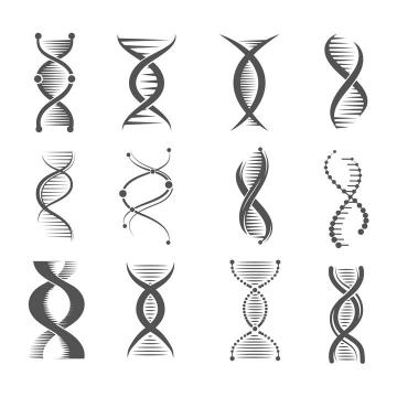 12种不同风格的黑色DNA双螺旋结构示意图图片免抠矢量素材