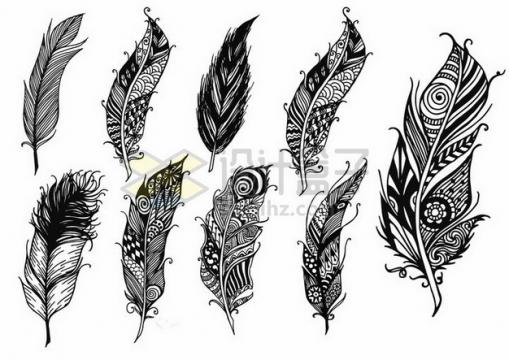 9款抽象图案的黑白色羽毛png图片素材