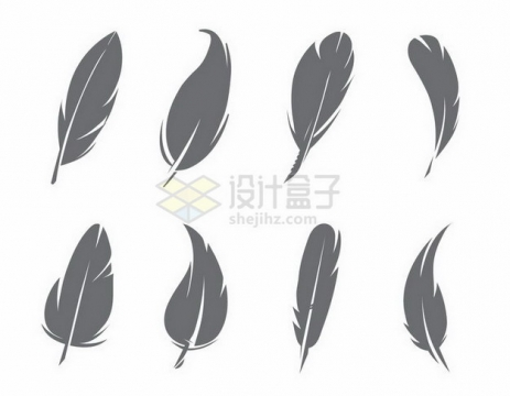 8款灰色的羽毛图案png图片免抠矢量素材