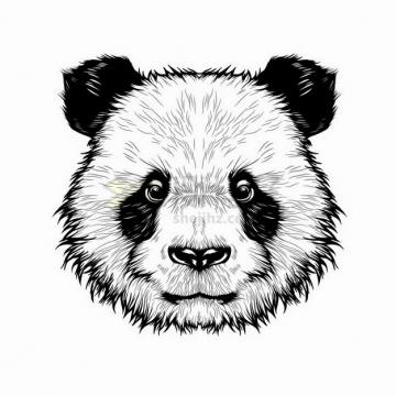 手绘黑白色熊猫头png图片免抠矢量素材