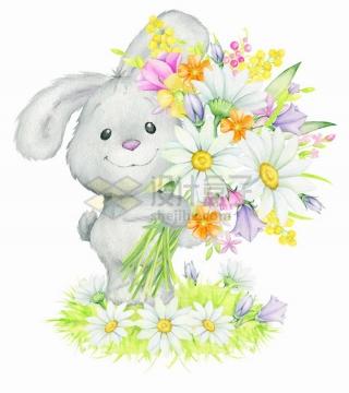 可爱卡通小兔子捧着各种雏菊鲜花水彩画彩绘png图片免抠矢量素材