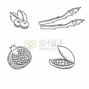 蓝莓蕨菜石榴豌豆等美味蔬菜水果手绘素描插画png图片免抠矢量素材