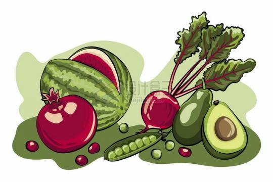 西瓜石榴萝卜豌豆牛油果等美味蔬菜水果彩绘插画png图片免抠矢量素材