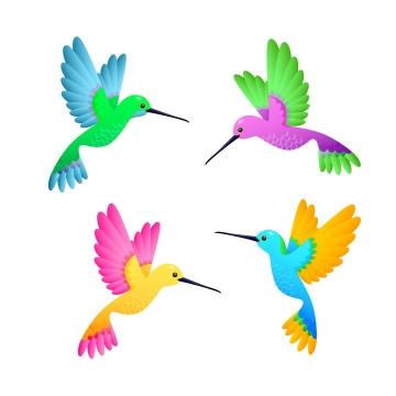 四款彩色手绘风格蜂鸟鸟类图片免抠素材