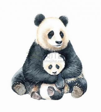 彩绘风格抱着熊猫宝宝的大熊猫妈妈png图片免抠矢量素材