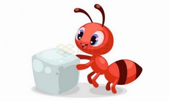 发现一块白糖的红色卡通小蚂蚁png图片免抠矢量素材