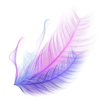 唯美风格紫色红色羽毛图案图片免抠素材