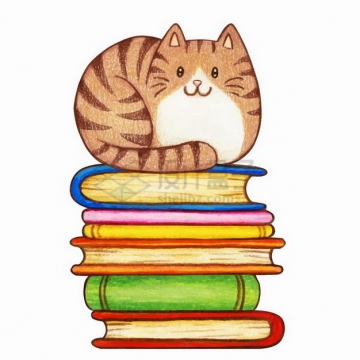 水彩画风格坐在书本上的猫咪png图片免抠矢量素材