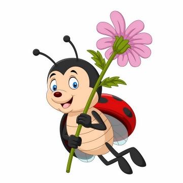 拿着花朵的可爱卡通七星瓢虫png图片免抠矢量素材