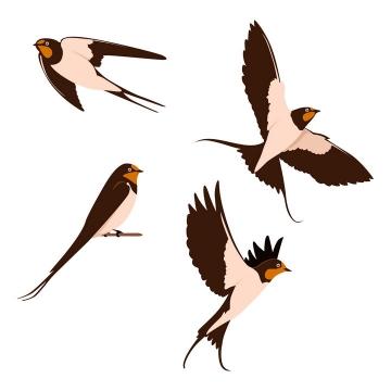 4个不同造型的燕子图片免抠矢量素材