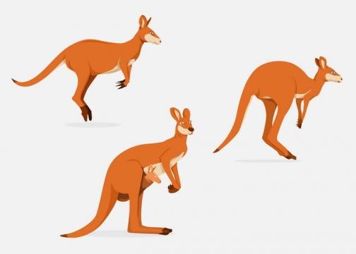 三只澳大利亚代表动物袋鼠图片免抠矢量素材