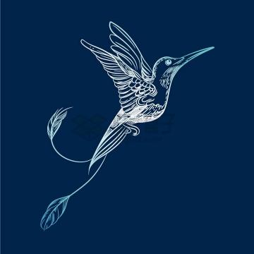 白色线条风格的蜂鸟png图片免抠矢量素材
