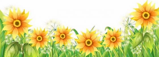 盛开的向日葵鲜花装饰图片免抠素材