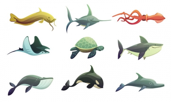 9款旗鱼乌贼蝠鲼海龟鲨鱼鲸鱼海豚虎鲸等海洋生物图片免抠素材