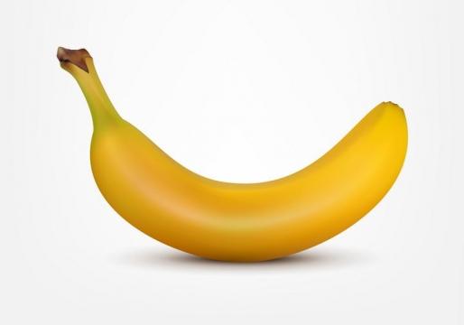 一根逼真的香蕉美味水果图片免抠矢量图