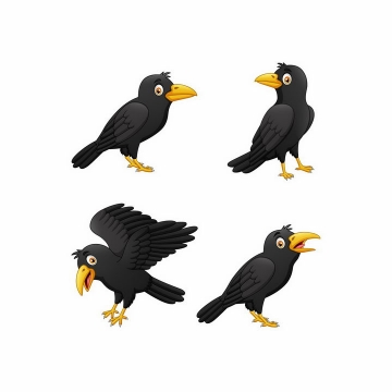 4只卡通乌鸦鸟类野生动物png图片免抠矢量素材