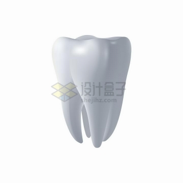 3D人体牙齿臼齿png图片免抠矢量素材