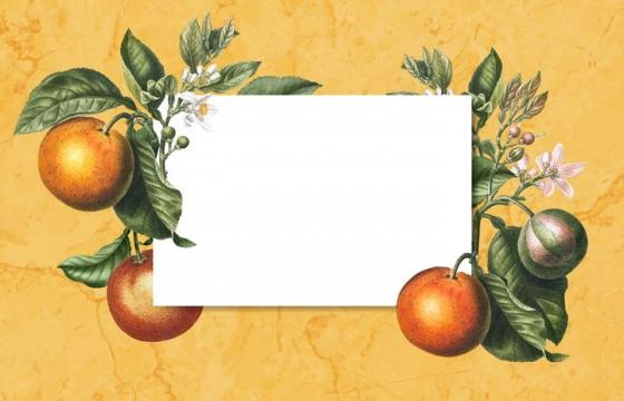 彩色素描手绘风格水果装饰的文本框图片免抠素材