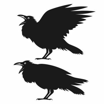 黑色大叫着的乌鸦鸟类动物剪影png图片免抠矢量素材