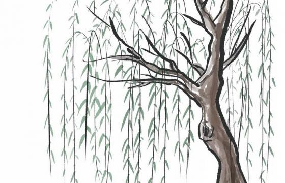 水墨画风格春天里的柳树png图片免抠素材