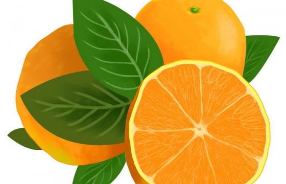 水彩画风格切开的橙子橘子水果图片免抠素材