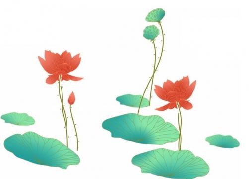 彩绘风格荷花荷叶和莲蓬843034png图片素材