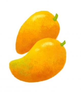 水彩画风格两颗芒果热带水果图片免抠素材